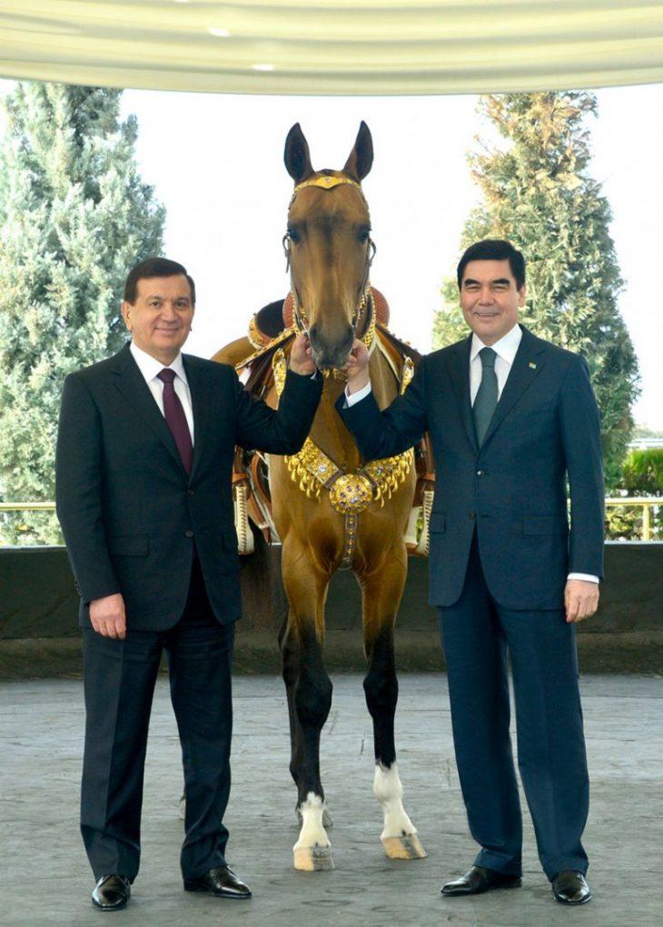 Berdymuhamedov presents akhalteke horse to President of Uzbekistan