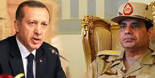 Turkish President Erdogan lashes out at Sisi over Egypt executions