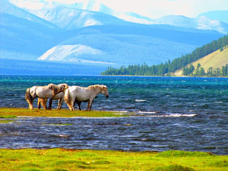 """UNESCO to protect ancient Lake Khuvsgul – """"Mother Ocean"""" in Mongolia"""