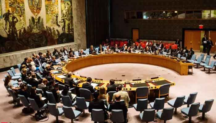 Pakistan supports India at UNSC polls
