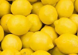 COVID-19: Turkey limits lemon exports as demand soars