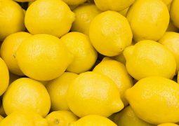 COVID-19: Turkey limits lemon exports as demand soars